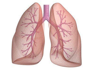Factores de Riesgo de Asma Bronquial y su Relacion con la severidad de las manifestaciones Clinicas